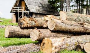 Emprende con electricidad alternativa: la leña del campo