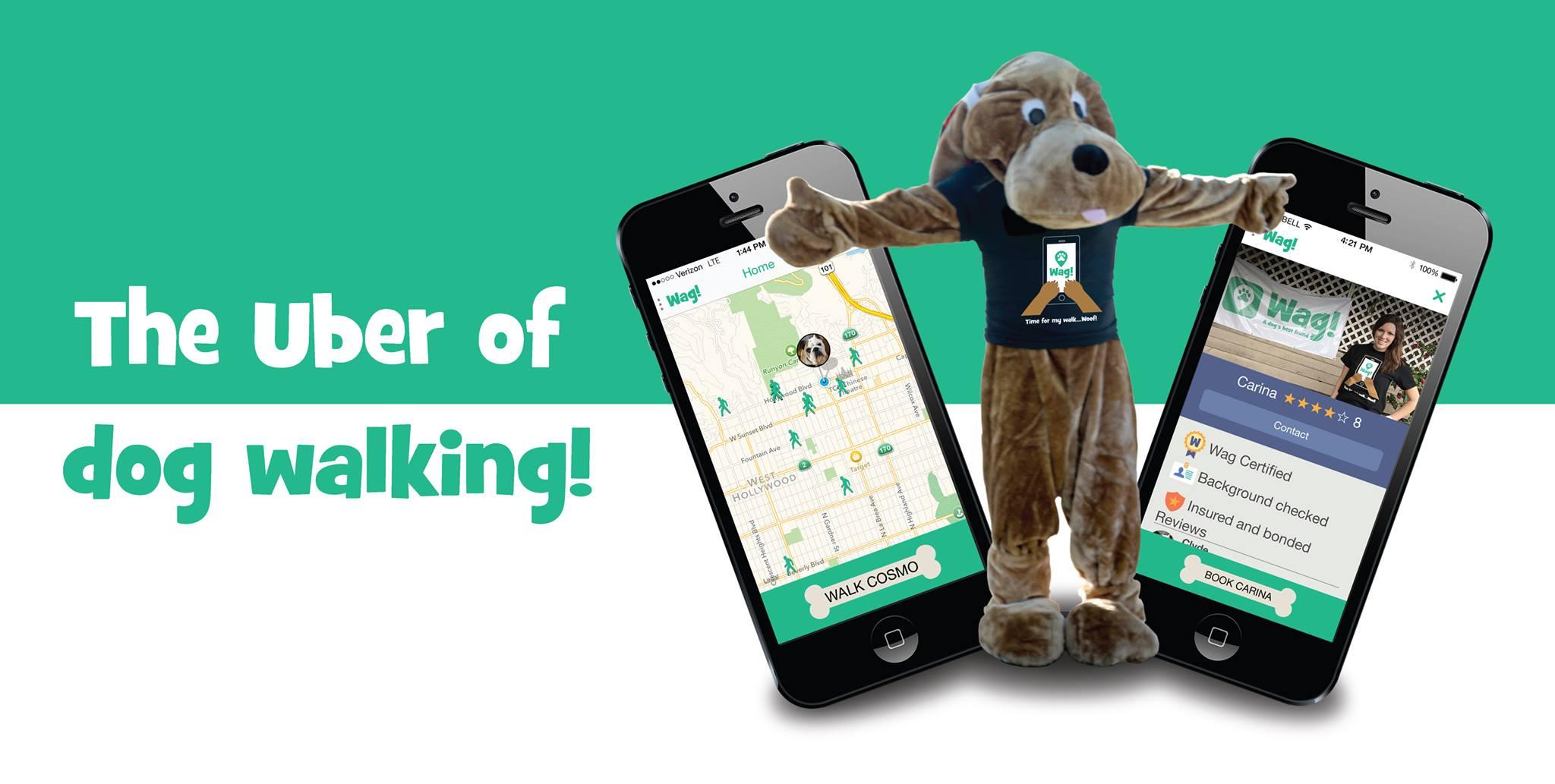 ¿Te gusta Wag? Es una app que conecta a dueños de mascotas y paseadores de perros