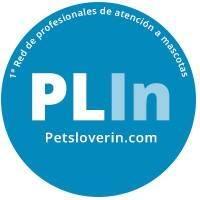 Emprendedores españoles crean PetsLoverIn, la primera red global de atención a mascotas