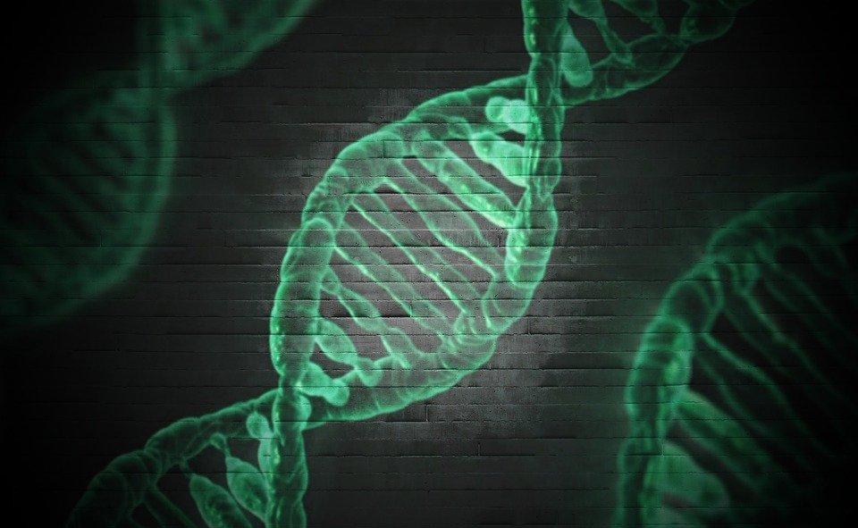 Grail, una empresa centrada en la detección precoz del cáncer que espera recaudar mil millones