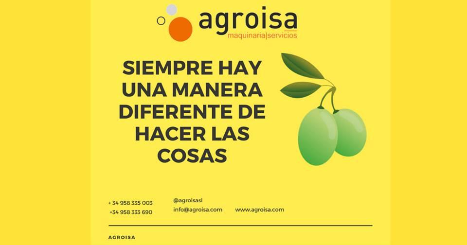Agroisa crea un innovador sistema que mejora la calidad de la aceituna