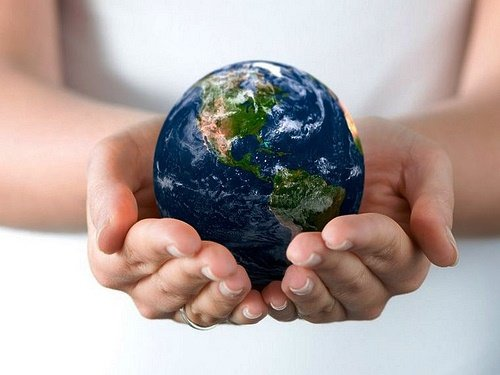 Emprender en el medio ambiente