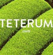 Teterum.com, el primer portal que permite comprar tés personalizados