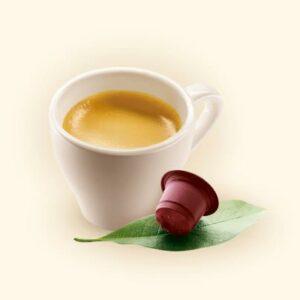 Buencafe.es, cápsulas de café sostenibles y compatibles con Nespresso