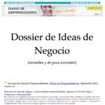 Dossier de ideas de negocio rentables y de poca inversión