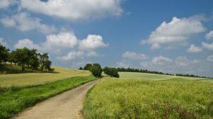 Nace la Asociación para la Promoción de Emprendedores y Autónomos Rurales