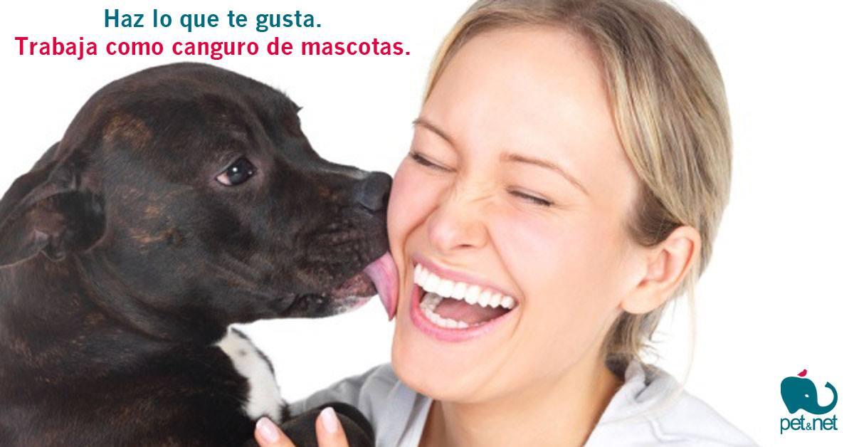 Nace Pet&Net, la primera plataforma de cuidadores de mascotas gratuitos
