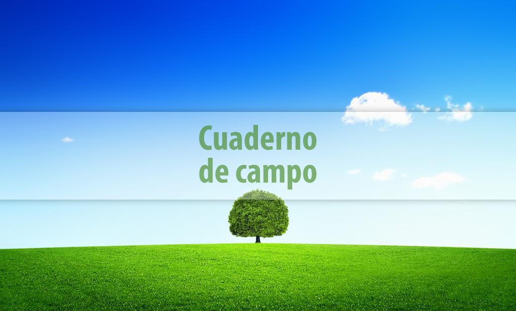 Los emprendedores Francisco y David Pardo crean la primera herramienta tecnológica para la explotación agrícola
