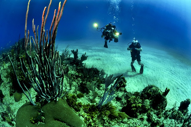 Bucear en Maldivas, una actividad perfecta para los emprendedores que desean relajarse