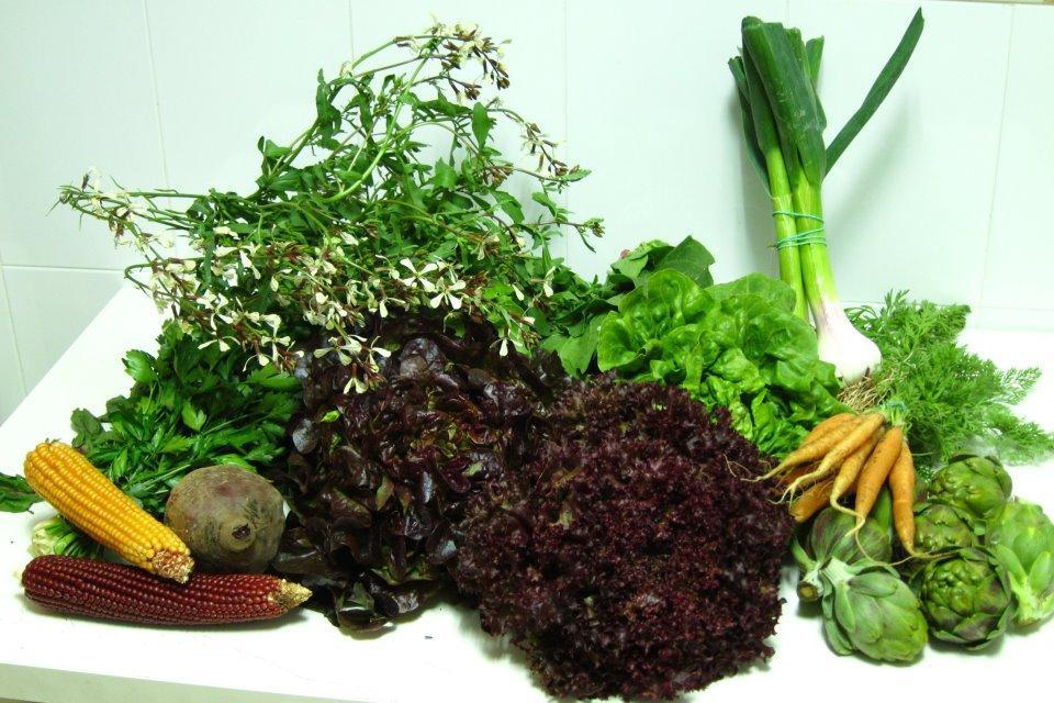 El Ecomercado, un proyecto de agricultura ecológica que recauda más de 6.000 euros