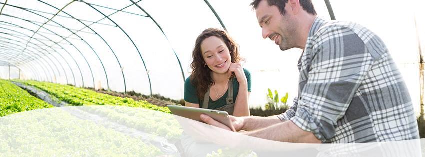 86 proyectos de 24 países optan a los 110.000 euros de la aceleradora agroalimentaria Orizont