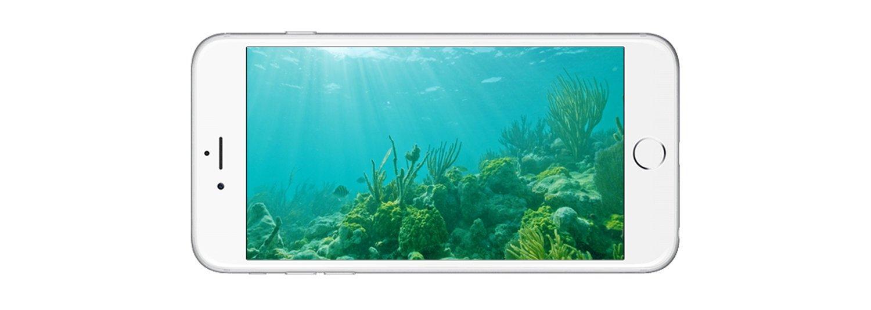 Paralenz, una cámara para hacer fotos bajo el agua que recauda más de 345.000 dólares