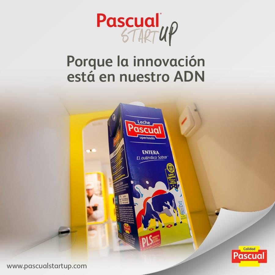 ¿Eres emprendedor? Ya puedes inscribirte en la segunda edición de los premios Pascual Startup