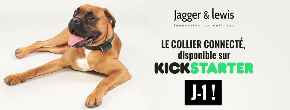 La empresa Jagger & Lewis recauda más de 56.000 dólares con un dispositivo inteligente para perros
