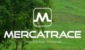 Mercatrace permite conocer el recorrido de los alimentos y consigue más de 86.000 euros