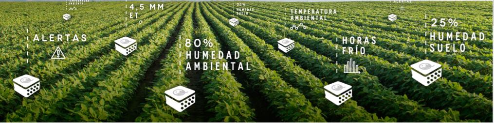 QAMPO, una línea de productos para ahorrar hasta un 50% en el consumo de agua