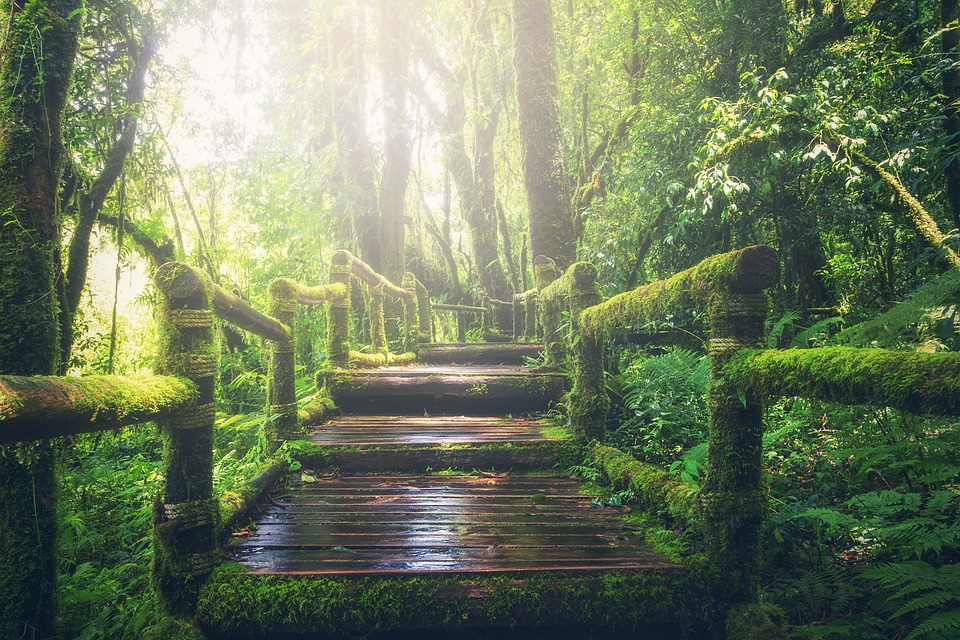 5 lugares de ensueño donde encontrarás inspiración para emprender