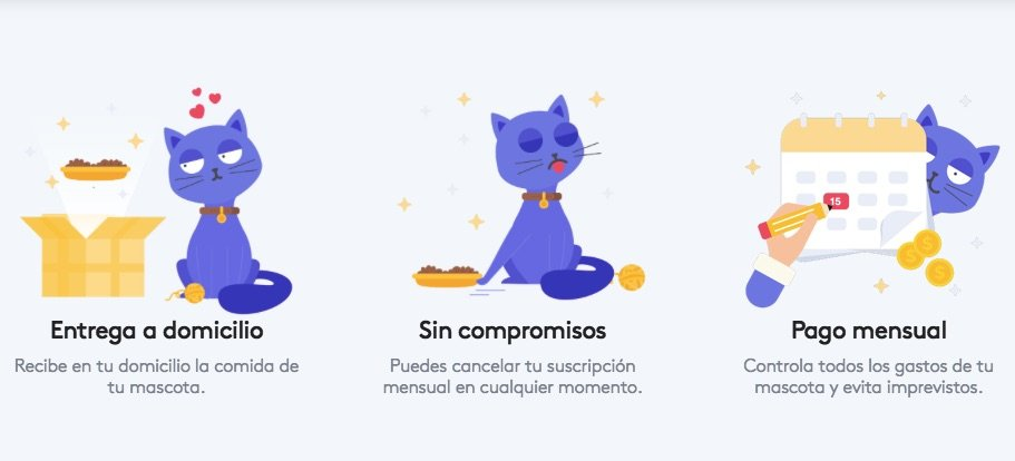 Waggle, el primer servicio integral de suscripción mensual para mascotas
