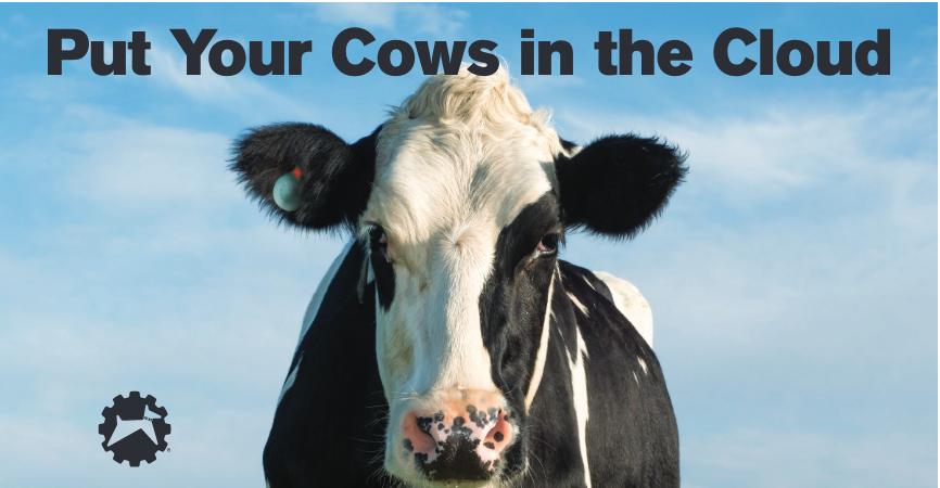 HerdDogg, una etiqueta inteligente que recopila información sobre las vacas para mejorar la producción agrícola - Diario de Emprendedores