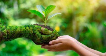 ¿Tu compañía está comprometida con causas socioambientales? Dales visibilidad siguiendo estos consejos - Diario de Emprendedores