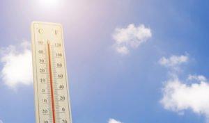 6 consejos para evitar el exceso de calor sin disparar la factura eléctrica - Diario de Emprendedores
