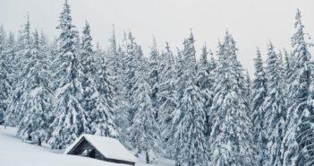 6 consejos para disminuir el consumo de energía en invierno - Diario de Emprendedores