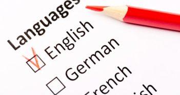 Llega Ynsitu, el primer market place mundial dedicado a cursos de idiomas en el extranjero - Diario de Emprendedores