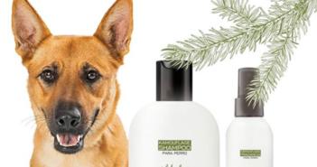 Kamouflage, una marca de cosmética para perros con aromas naturales - Diario de Emprendedores