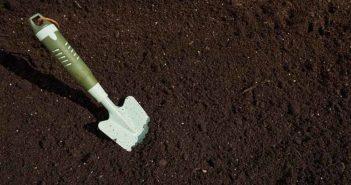 Crean el primer sustrato universal fabricado con compost procedente de Alcampo - Diario de Emprendedores