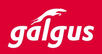 Galgus, una startup española que participará en el Facebook Accelerator: Connectivity - Diario de Emprendedores