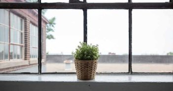 8 razones para calentar el hogar con estufas de pellets - Diario de Emprendedores