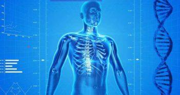 Ahorra en tu seguro de salud - Diario de Emprendedores