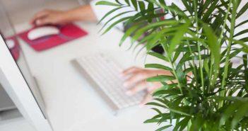 Cómo potenciar el bienestar de los empleados que trabajan desde casa - Diario de Emprendedores