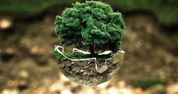 Consejos para tener un ecommerce sostenible - Diario de Emprendedores
