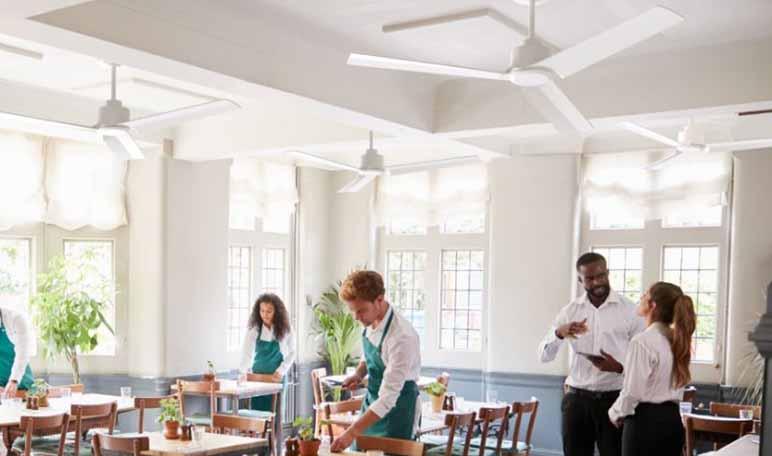 ANNE, el ventilador ideal para espacios pequeños - Diario de Emprendedores