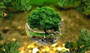 Cómo impulsar la Ley de Cambio Climático desde el departamento de Recursos Humanos - Diario de Emprendedores