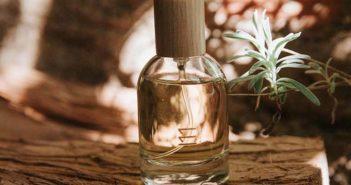 The Eleven House lanza el perfume M11 - Diario de Emprendedores